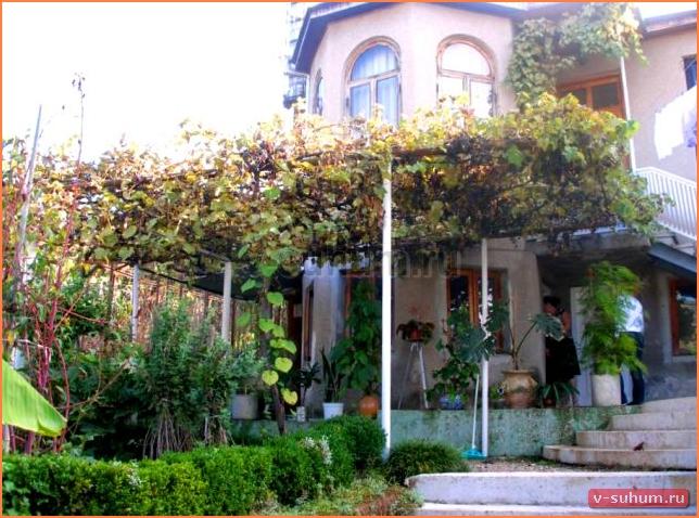 Частный сектор у Жанны, Сухум, Абхазия