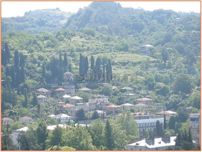 Отдых в Абхазии частный сектор фото