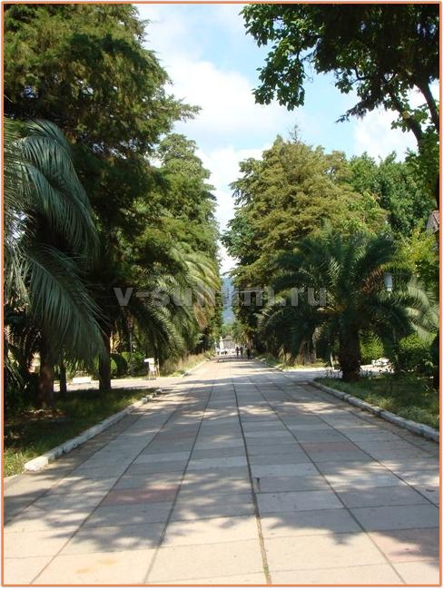 Гагры Абхазия фото