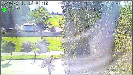 камеры в гаграх в реальном времени